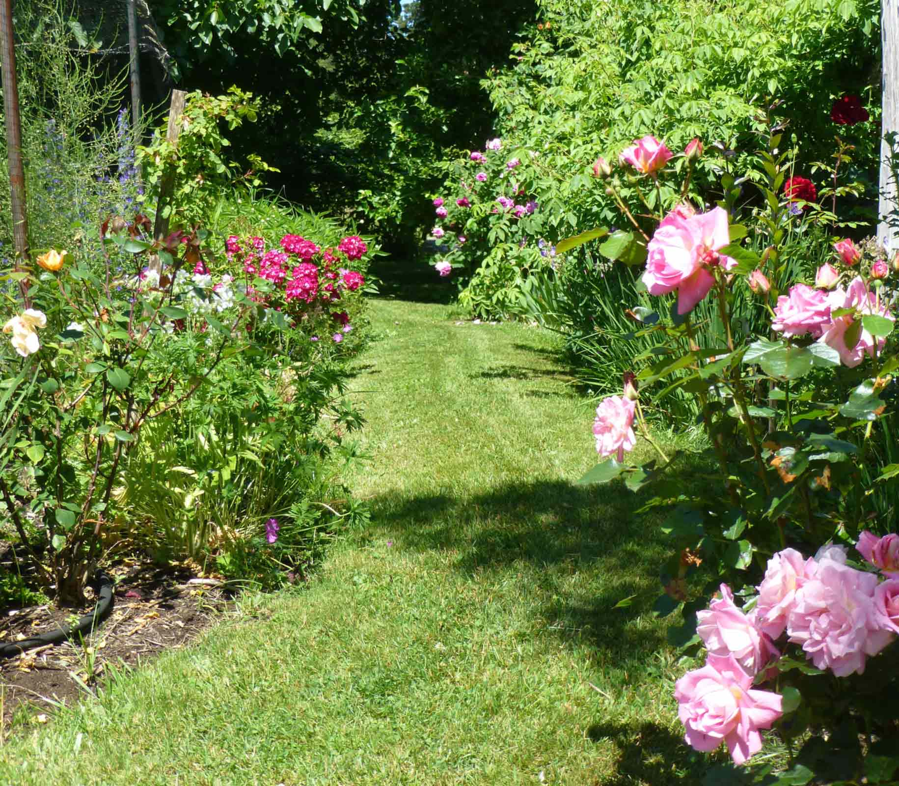 21st Denman Home & Garden Tour, June 13 – 14, 9:30 – 5:00